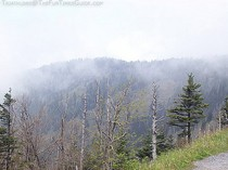 gatlinburg-tn-smoky-mountains.jpg